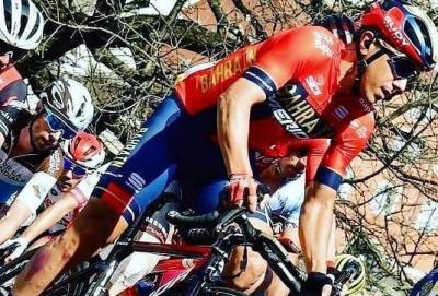 Freccia Vallone, vince Alaphilippe, caduta con commozione cerebrale per Pozzovivo