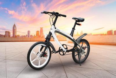 V-Ita Group, la bici come stile di vita