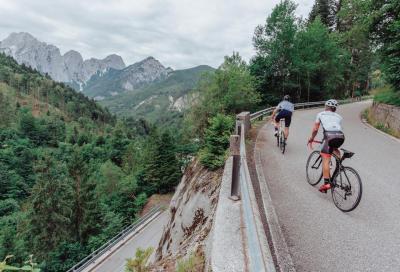 Fino al limite delle Alpi Carniche